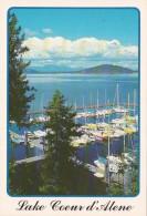 Idaho Lake Coeur D' Alene Marina With Sailboats - Coeur D'Alene