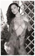 Sexy TERA PATRICK Glamour & Fashion PHOTO Postcard (04) - RWP Edition Year 2010 - Pin-Ups