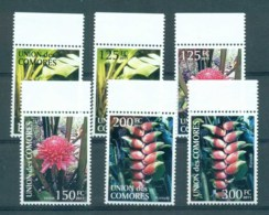 Comoro Is 2011 Flora, Flower, Plant,Orchids MUH CM006 - Comores (1975-...)