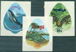 TONGA Service Aérien 132 / 134 Nxx Tortue , Baleine... Adhésifs TB . Cote:30 €. - Tonga (1970-...)
