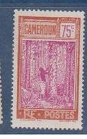 CAMEROUN        N°  YVERT      140    NEUF SANS GOMME       ( SG   1/03 ) - Nuevos
