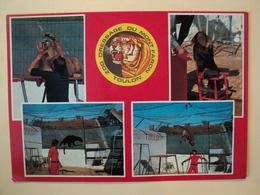 CPSM TOULON. 1980. VUE MULTIPLE ZOO DRESSAGE DU MONT FARON. VAR. 83 CHIMPANZE / PUMA / PANTHERE NOIRE ET DRESSEURS. - Toulon