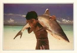 CP Explicative-Maldives-Requin             L2670 - Maldives