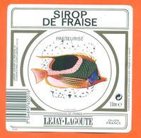 étiquette De Sirop De Fraise Pasteurisé Lejay Lagoute à Dijon - 100 Cl - Poisson Exotique - Fruits & Vegetables