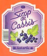 étiquette De Sirop De Cassis Antartic à Chateauneuf Sur Loire - 100 Cl - Fruits & Vegetables