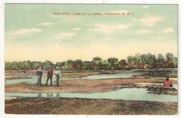 The Pitch Lake Of La Brea, Trinidad - Trinidad