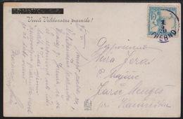 Slovenia, Chainbreakers, Trebno, Picture Postcard, Franked With 15 Vin., April 1919 - Cartas
