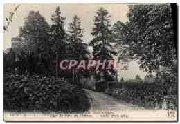 CPA Saint Aignan Allee Du Parc Du Chateau - Saint Aignan