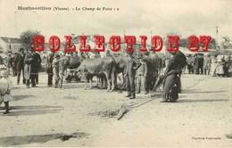 ☺♦♦ FOIRE Aux BOEUFS à MONTMORILLON - BESTIAUX BOEUF VEAU - Foires
