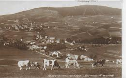 AK 0029  Oberwiesenthal Mit Unter- U. Böhmisch-Wiesenthal - Verlag Vogel Um 1920-30 - Oberwiesenthal