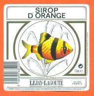 étiquette De Sirop D'orange Lejay Lagoute à Dijon - 100 Cl - Poisson Exotique - Fruits & Vegetables