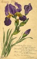 Superbes Iris ,  Caruchet Illustrateur .  Carte De Bonne Fête . - Autres Illustrateurs