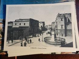 18591) BARI PROVINCIA CORATO CORSO CAVOUR NON VIAGGIATA SERIE CORATO D'ALTRI TEMPI - Bari