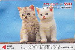 Carte Prépayée Japon - ANIMAL - CHAT CHATS / 5500 - CAT Japan Prepaid Card - KATZE - GATTO - GATO - FR 4667 - Gatos