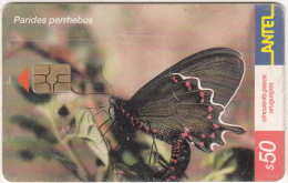 URUGUAY - Butterfly, Parides Perrhebus(245a), 08/02, Used - Uruguay