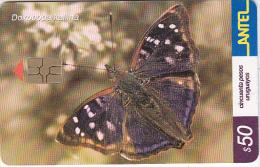 URUGUAY - Butterfly, Doxocopa Kallina(244a), 07/02, Used - Uruguay