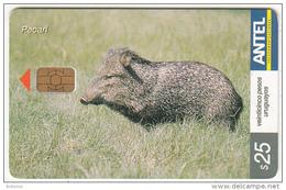 URUGUAY - Wild Boar, Pecari(305a), 11/03, Used - Uruguay