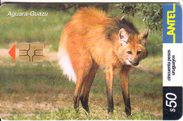URUGUAY - Animal, Aguara-Guazu(250a), 10/02, Used - Uruguay