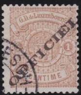 Luxembourg     .    Yvert    .   Service   19  ( 2 Scans )    .     O     .        Oblitéré    .    /     .    Gebraucht - Dienst