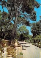 [83] Var > SAINT MANDRIER Le Vert Bois Village Vacances S.N.C.F ( Editions ARIS 9) *PRIX FIXE - Saint-Mandrier-sur-Mer