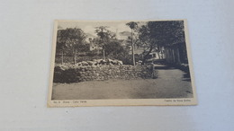 ANTIQUE POSTCARD AFRICA PORTUGAL CABO CAPE VERDE - BRAVA ISLAND - NOVA SINTRA Nº8 - Cap Vert