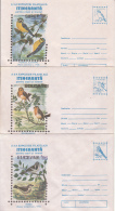 73028- SPARROW, ROBIN, BLUE TIT, FIRECREST, GREENFINCH, BIRDS, COVER STATIONERY, 5X, 1995, ROMANIA - Sparrows