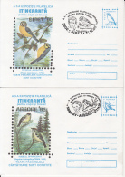 73029- SPARROW, BLUE TIT, FIRECREST, GREENFINCH, BIRDS, COVER STATIONERY, 4X, 1995, ROMANIA - Sparrows