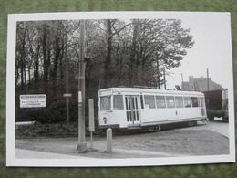 DILBEEK - NINOOFSE STEENWEG ( Tram - Scan Recto/verso  ) - Dilbeek