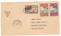 Rare Lettre Pour Les USA De 1930 Taxée Avec 2 Timbres Taxe Cerf Et Niaouli Grosse Cote - Briefe U. Dokumente