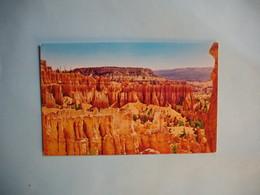 NAVAJO LOOP TRAIL  -  Bryce Canyon National Park  -  UTAH  -  Etats Unis - Bryce Canyon