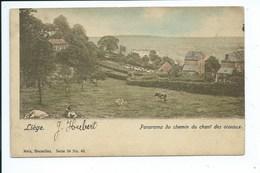 Liège Cointe Panorama Du Chemin Du Chant Des Oiseaux - Liege