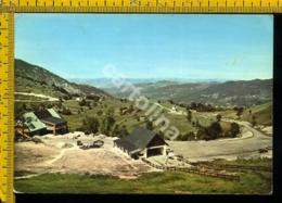 Cuneo Viola - Cuneo