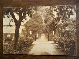 Oude Postkaart   Zusters Van H. Vincentius A Paulo  Gysegem - AALST - Aalst