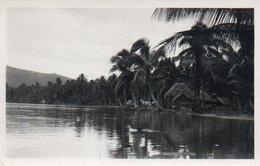88Sv  Tahiti Plage Cocotiers Et Cases - Tahiti