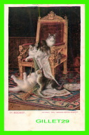 CATS - CHATS - IN MISCHIEF - 1906, AMERICAN-JOURNAL-EXAMINER - NEW YORK SUDAY AMERICAN & JOURNAL - UNDIVIDED BACK - - Chats