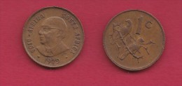 SOUTH AFRICA, 1979, , 1 Circulated Coin 1 Cent Bronze(Diederichs) KM98 ,   C3300 - South Africa