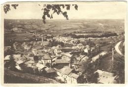 CPA DE VIRIEU-SUR-BOURBRE  ( ISERE )  VUE GENERALE - Virieu
