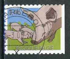 COB 3484 Obl  (B4577) - Belgium