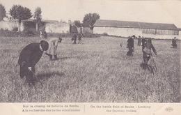 CPA - Sur Le Champ De Bataille De Senlis à La Recherche Des Balles Allemandes - Weltkrieg 1914-18