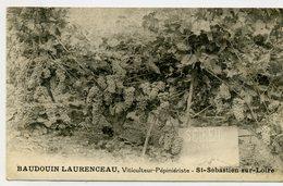 44 - SAINT SEBASTIEN Sur LOIRE - F. BAUDOUIN - LAURENCEAU - Viticulteur Pépiniériste - Saint-Sébastien-sur-Loire