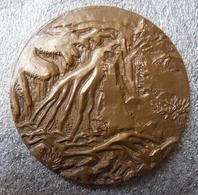 Medaille Bronze SISTERON (04) Conseil Général Des Alpes De Haute Provence - Professionals / Firms
