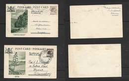 S.Africa, 1 1/2d Leopard Post Cards, BIG HOLE KIMBERLEY 3 IX 57 & ERMELO 30 VII 55 - South Africa (...-1961)
