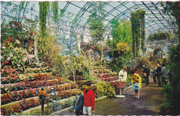 Postcard - Rhyl - Interior, Royal Floral Hall - VG - Ansichtskarten
