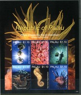 PALAU 2013** - Marine Life - Photo Images By Kevin Davidson - Block Di 6 Val. MNH, Come Da Scansione. - Meereswelt