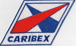 E40 - Sport - Sellier Automobile - Ecusson 14 X 8,5 - CARIBEX - LA GARENNE COLOMBES ? - Ecussons Tissu
