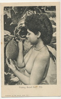 Fiji Nude Girl Picking Bread Fruit Arbre à Pain . Jeune  Fille Seins Nus Edit Gus. Arnold - Fiji