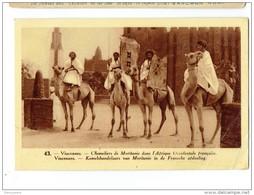 DIEREN 249 -  Vincennes - Chameliers De Moritanie Dan L'afrique Occidentale Francqise - Chocolatierie Lecocq - Animaux & Faune