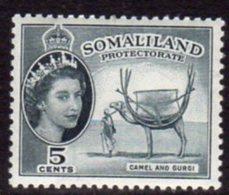 British Somaliland 1953-8 5c Camel & Gurgi Value, MNH, SG 137 (BA) - Somaliland (Protectorate ...-1959)