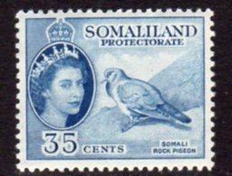 British Somaliland 1953-8 35c Stock Dove Bird Value, MNH, SG 142 (BA) - Somaliland (Protectorate ...-1959)