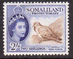 British Somaliland 1953-8 2/- Stock Dove Bird Value, MNH, SG 146 (BA) - Somaliland (Protectorate ...-1959)
